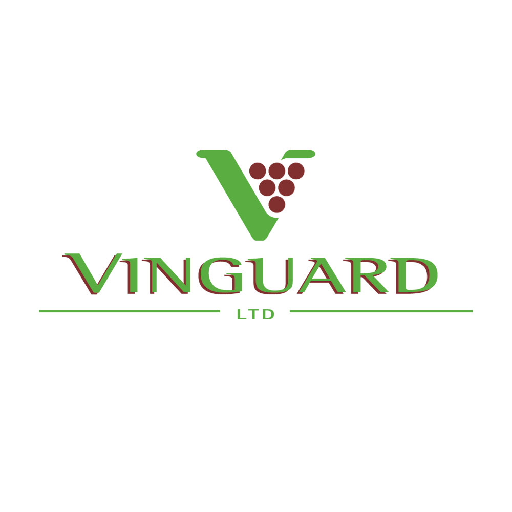 Logo design for Vinguard